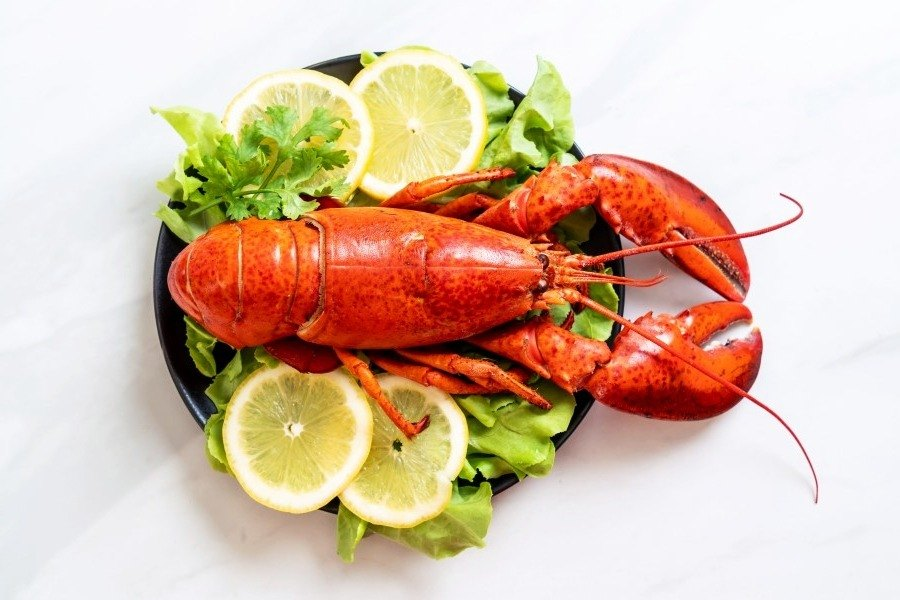 Treat yourself to lobster